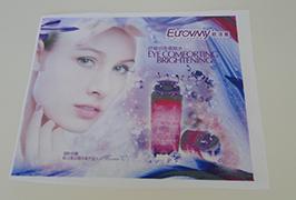 फ्लैग क्लॉथ बैनर 1.6 एम (5 फीट) इको विलायक प्रिंटर WER-ES160 4 द्वारा मुद्रित
