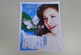 3.2 एम (10 फीट) इको विलायक प्रिंटर WER-ES3201 द्वारा मुद्रित पीवीसी बैनर