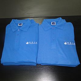 ए 3 टी शर्ट प्रिंटर WER-E2000T द्वारा पोलो शर्ट अनुकूलित मुद्रण नमूना